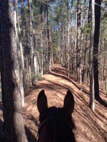 trails4